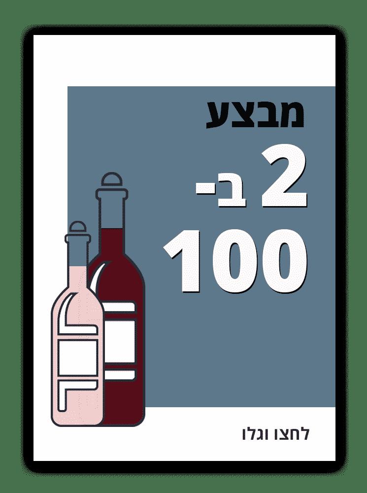 מבצע 2 ב100